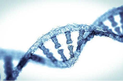 未来或许用DNA技术来进行数据存储