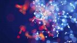自然语言处理——人工智能连接主义复兴浪潮中的下一个突破口