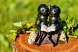 灵感来自蚂蚁,瑞士?#33455;客哦友?#21046;出小型机器人