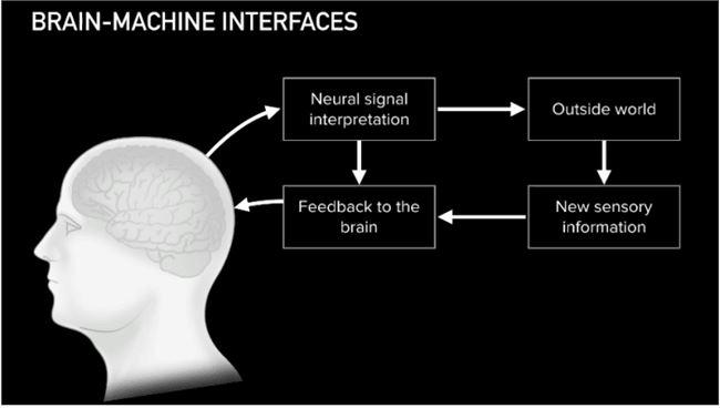 揭秘大脑植入芯片背后公司Neuralink的雄心与壮志