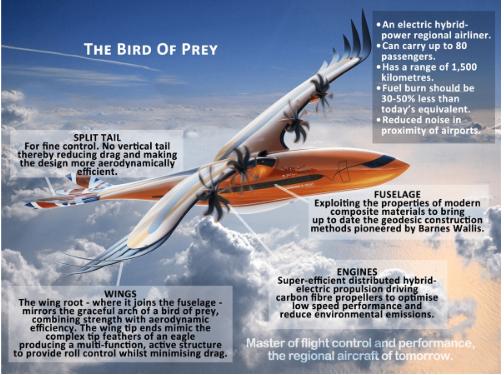 空中客车正在利用仿生学来挖掘飞机设计方面的潜力