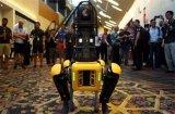 准备好让机器人与我们一起走在路上了吗?