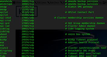 怎样在Linux中列出或显示开放端口