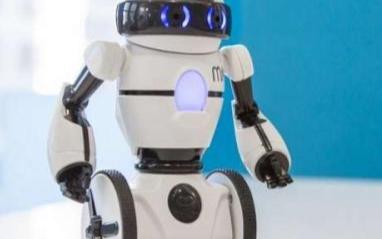 2019年将是微型机器人的黄金发展期