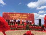 江西信丰高新技术产业园区举办三大项目开工庆典