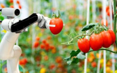 农业或将成为未来机器人产业落地的领域