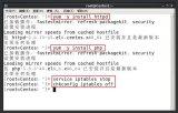Linux搭建Web服务