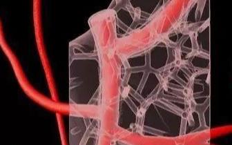 3D打印的人类心脏可实现部分心脏功能