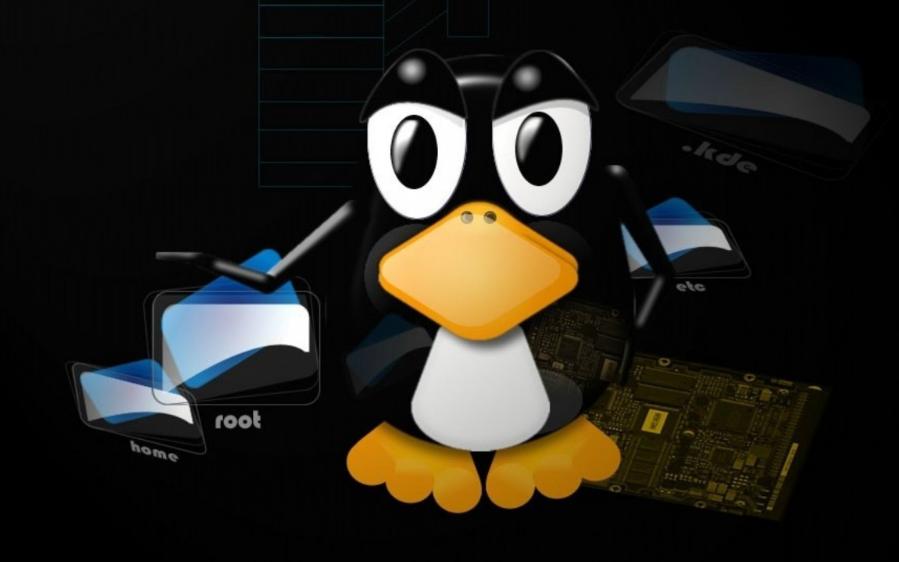 简述Linux文本查看命令