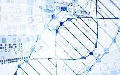 在DNA上存储信息或将成为现实且成本低