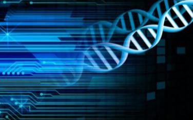 边长一米的DNA立方体可满足世界上一年的存储需求