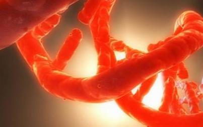 超精密的DNA编纂技术能有效地治疗癌症