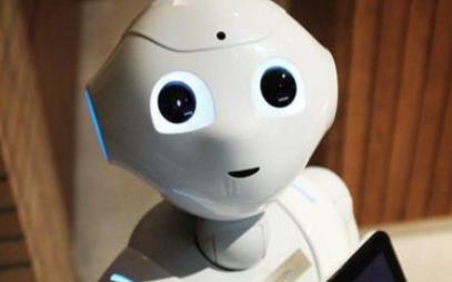 中国机器人行业最后会发展成什么样子呢