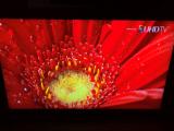 4k电视对比传统电视的优势有哪些