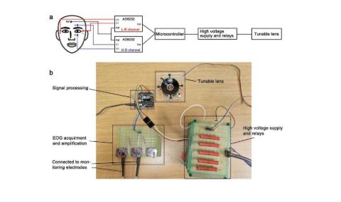 研究人员发明出一种柔性机器人镜头原型