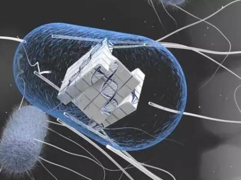 让细胞也可以变成数字信号处理器