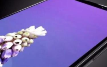 新iPhone的无线充电反向快充成为了焦点