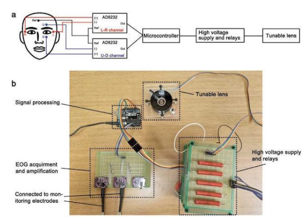 研究人员发明可用人眼控制的机器人镜头