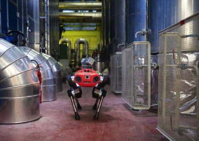 瑞士研发的新型四腿机器人崭新亮相