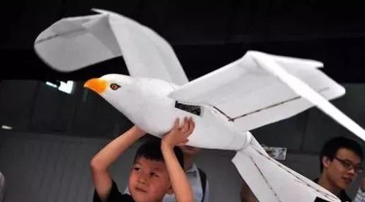 """2019世界机器人大会在北京闭幕 """"智能新生态、开放新时代"""""""
