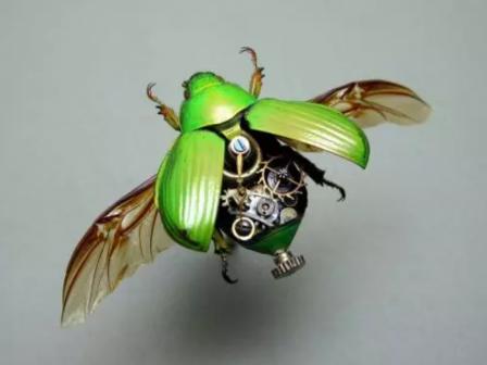 机器人的设计是如何受到昆虫的启发