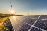 今年上半年我国新增并网太阳能发电规模11.4吉瓦 较2018年同期不足一半
