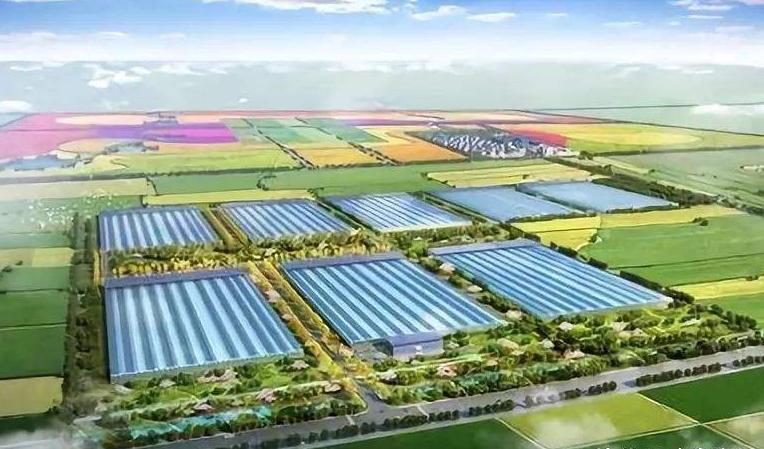寧夏高度重視各地農業物聯網技術發展,大力支持農業...