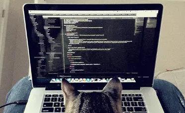 普通程序员和高级程序员有哪些区别