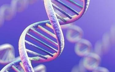 DNA存储器功能强大可大规模永久的保存数据