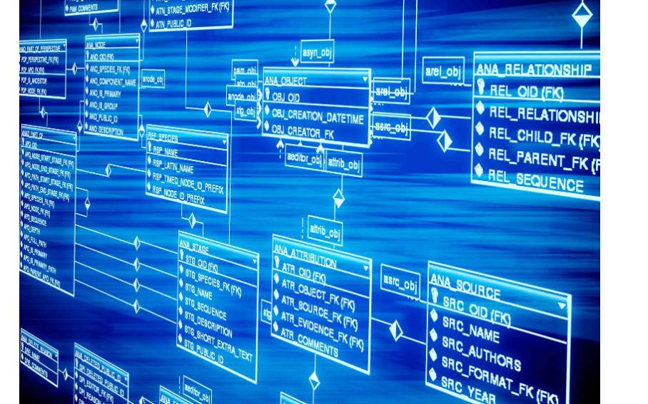 数据库存储介质的特点和存储结构的详细资料说明