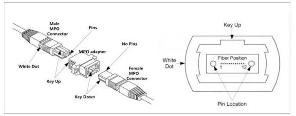 MPO光纤跳线的结构是怎样的以及是怎样分类的