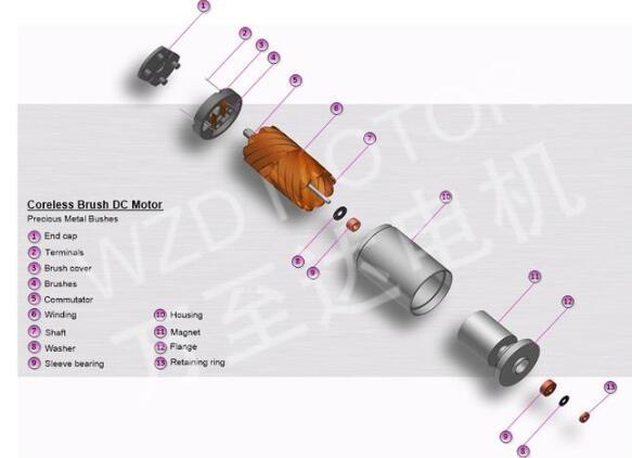 空心杯电机参数_空心杯电机结构
