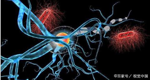 深度学习的基础知识,深度学习神经网络和学习过程的...