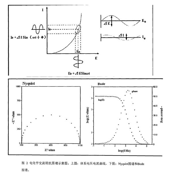 電化學阻抗譜的應用及其解析方法