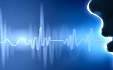 MEITRON模型技術是百度地圖語音定制的關鍵技術