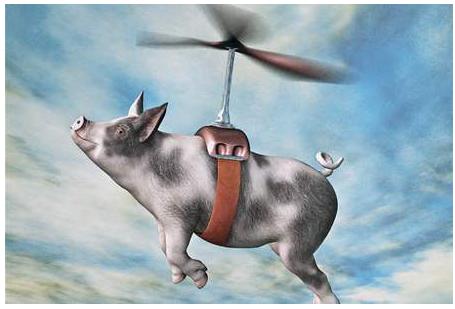 怎样利用AI来养猪