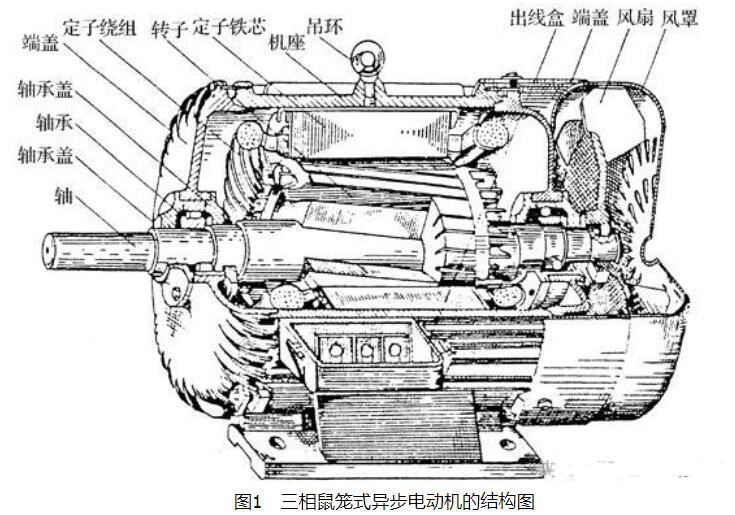 三相鼠笼式电机工作原理及结构