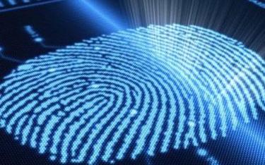 LG成功在觸控屏幕內嵌指紋觸控傳感器