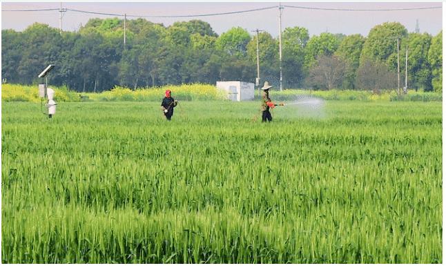 一体化智能灌溉在智慧农业中如何应用