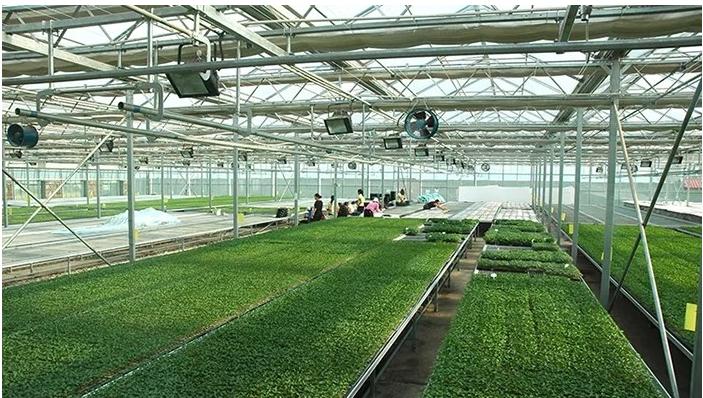 智慧農業如何才有更深層次的突破