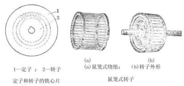 鼠笼式电机结构_鼠笼式电机的优缺点
