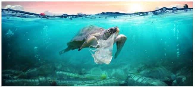 区块链技术可以让我们减少塑料的使用吗