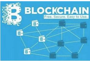 主链与侧链的双向桥接网络怎样去构建