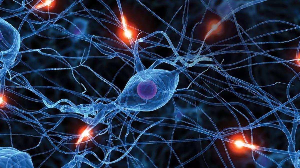 肿瘤医生怎么看医学领域的人工智能