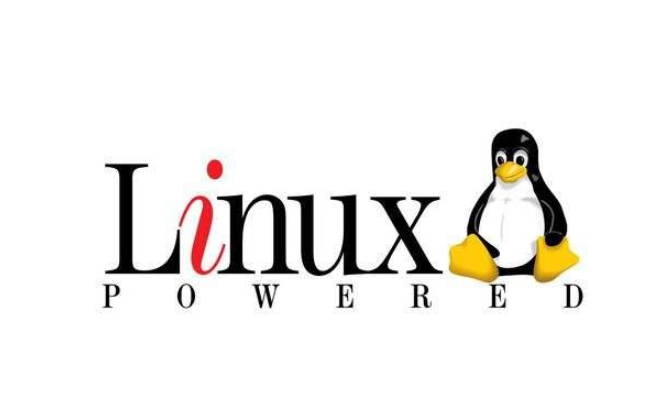 Linux中应用程序PING的源代码免费下载