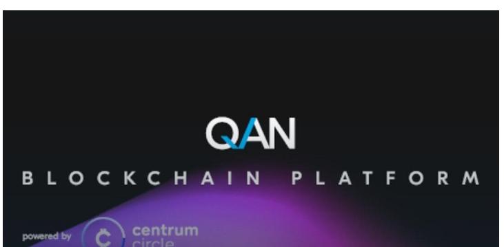 QAN是怎样的区块链