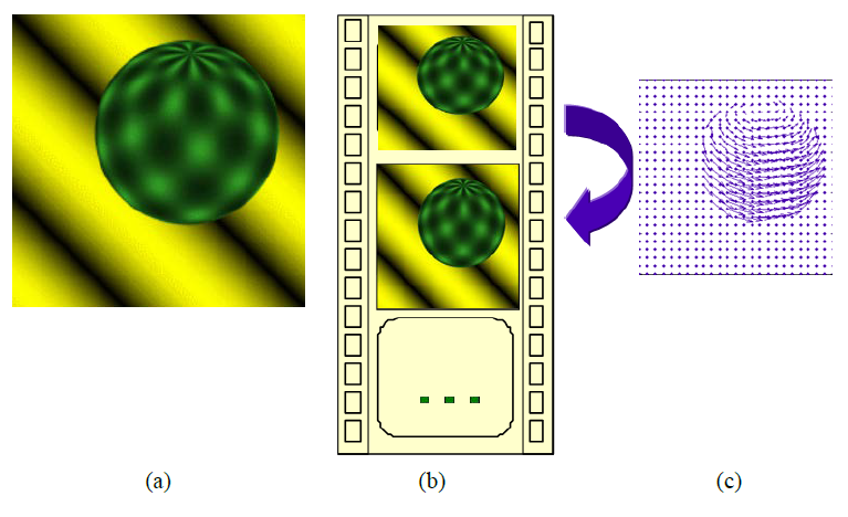 使用光流进行运动图像分析的研究进展说明