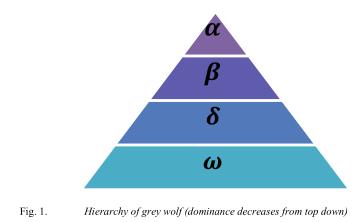 灰狼优化器的介绍和灰狼优化算法代码免费下载