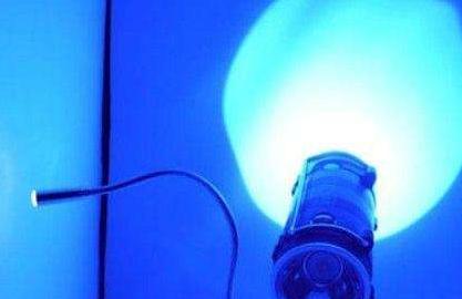 美国研究人员指出 常在LED蓝光下会影响大脑导致短命