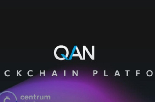 QAN将可以解决现有区块链中的许多困难挑战